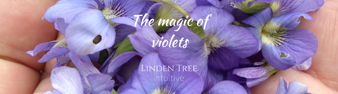 The Magic of Violets