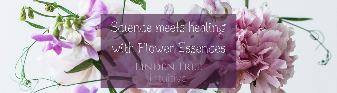 Science meets healing with Flower Essences