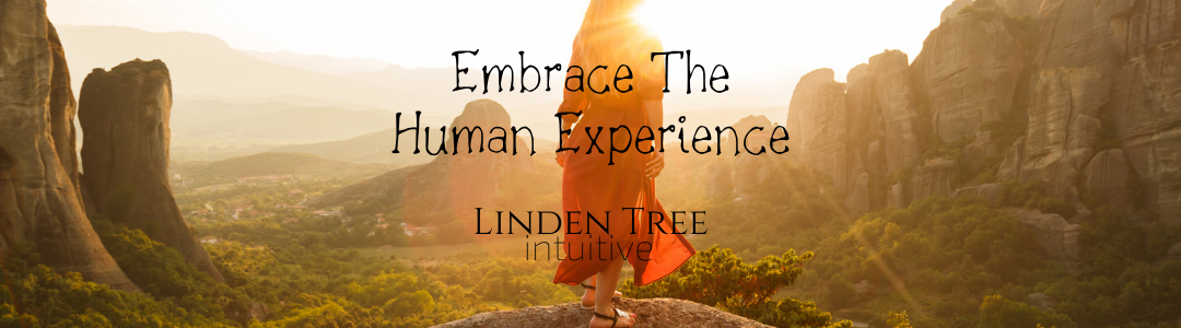 Embrace The Human Experience